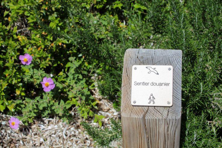 Paletti che segnalano il sentiero